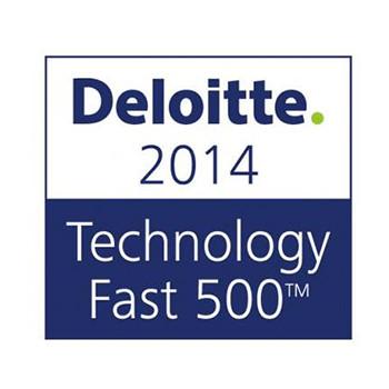 Deloitte2014